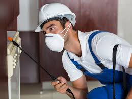 Pest Control Services for the Fall and Spring
